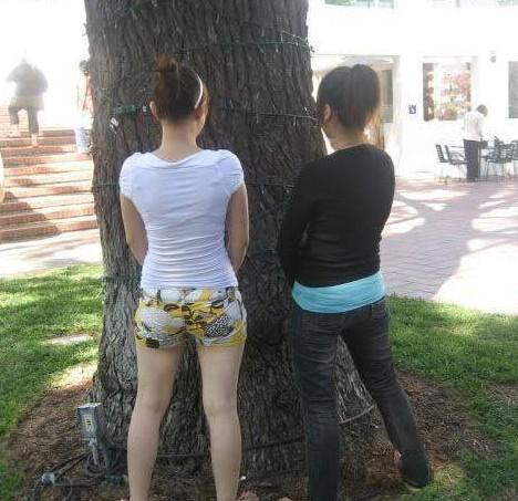 这两美女在干什么 酷酷贴图