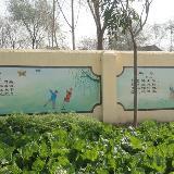[分享]校园文化墙绘,有需要的小朋友进来参考一下吧