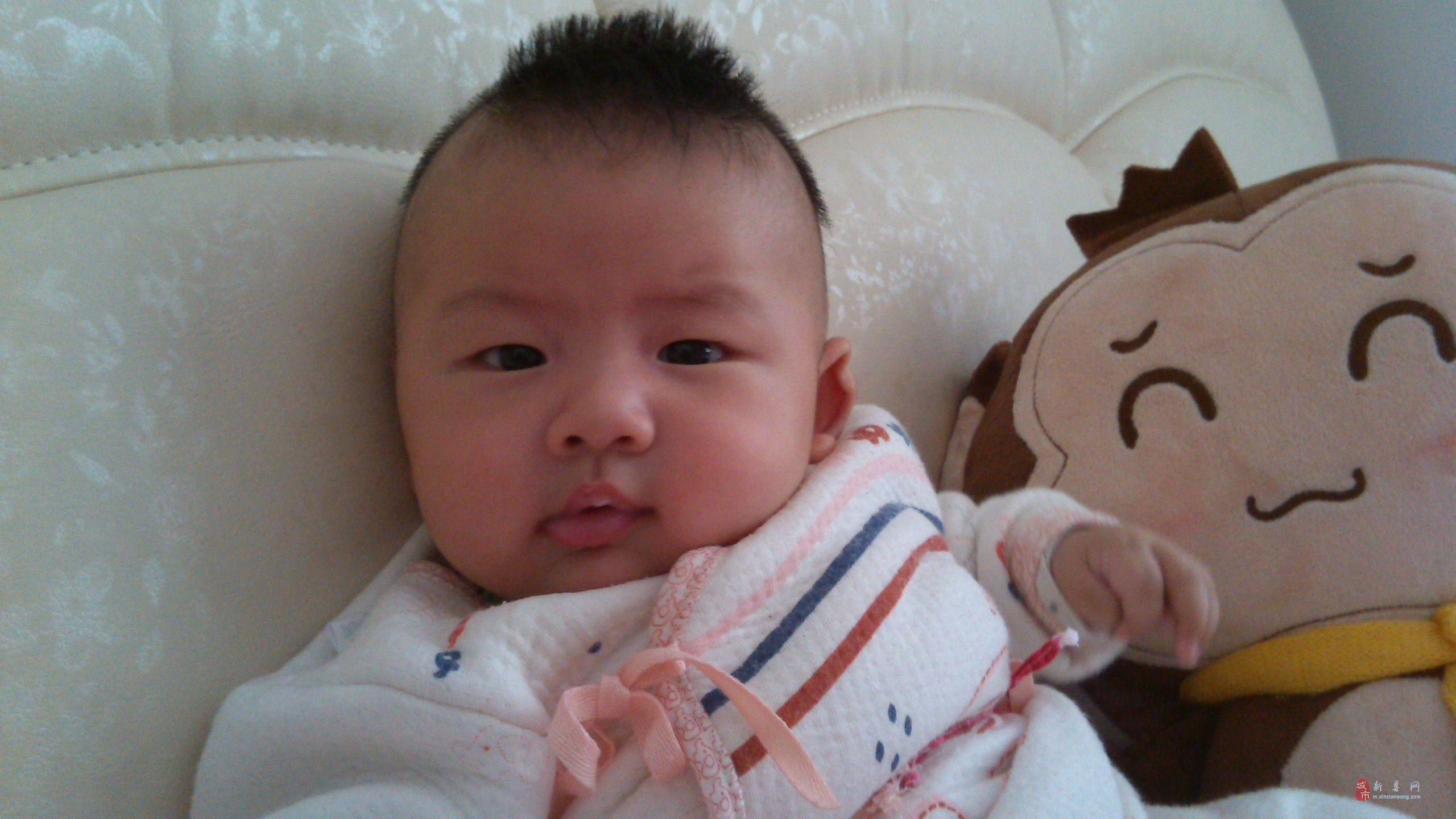收集新县的可爱宝宝靓照的