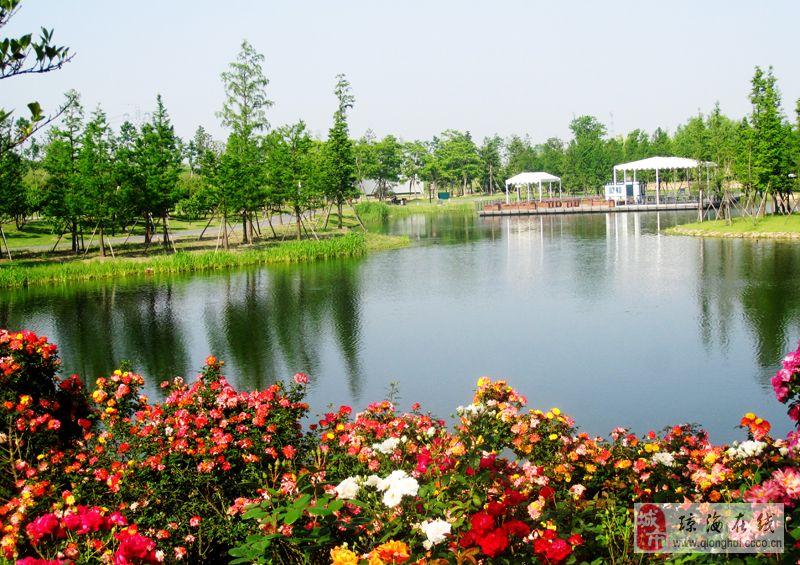 [原创]上海辰山植物园一月季园