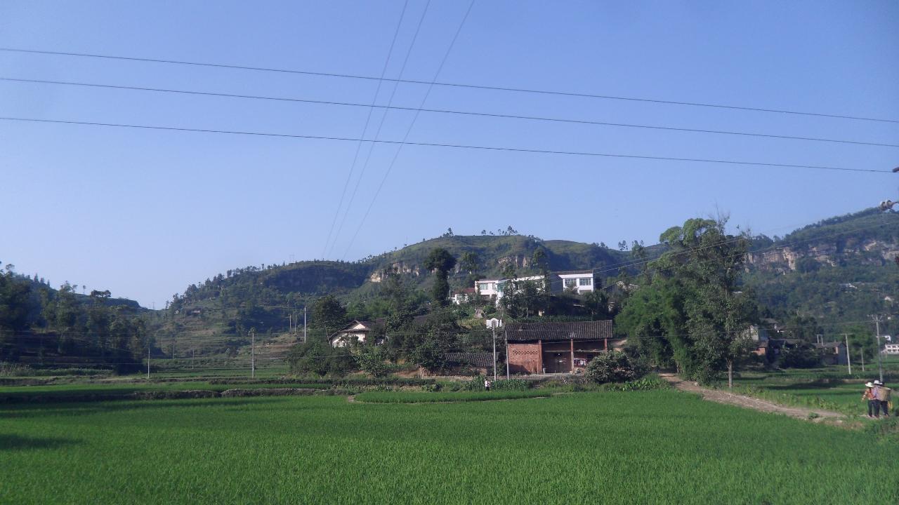 荣县双古镇地图