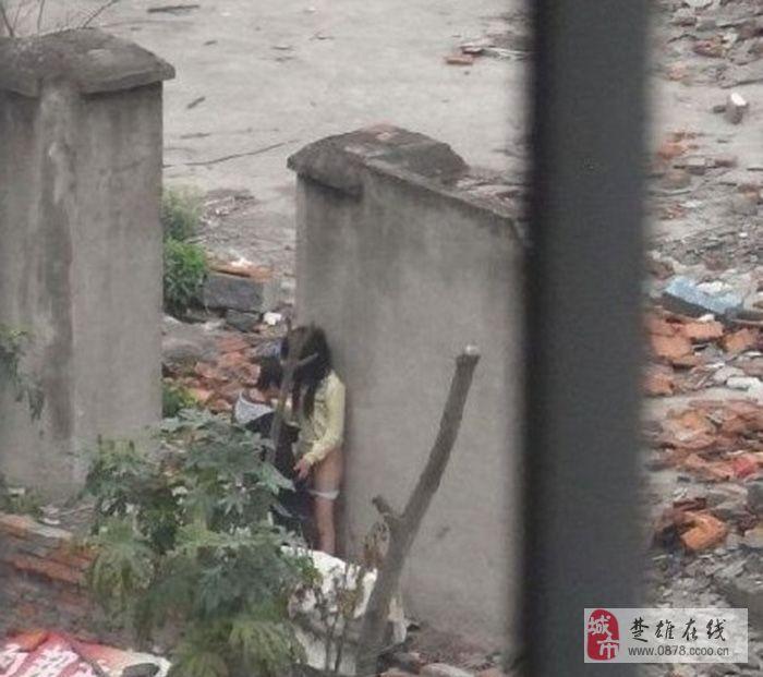 情侣公共场合偷吃禁果 知不知何为羞耻?