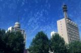 手机拍郑州市街景
