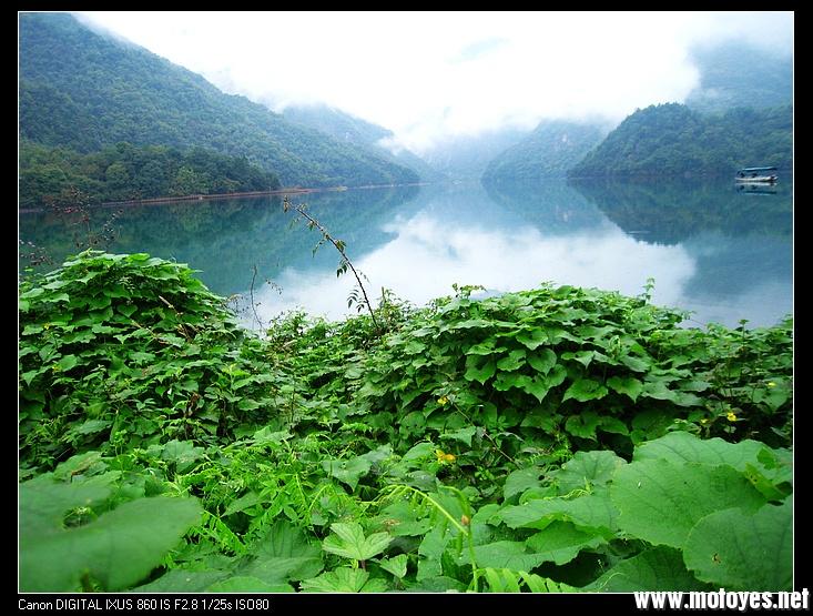 """文县铁楼乡境内,深山之中蕴藏着一幅原生态的画卷,它与一支自称""""白马"""