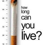 一万个拒烟的理由,大家一起补充!