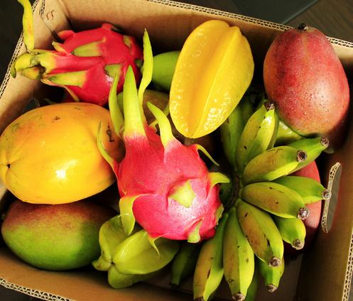 三亚热带水果