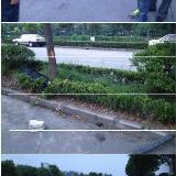 上海:驾校女学员错踩油门撞死等待练车的男学员