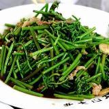 蕨菜土生土长  根茎粗壮