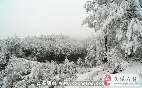 九龙山风景区