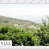 [原创]秦安:乡村随拍自然景色