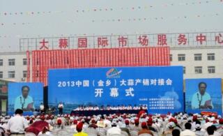 2013中国(金乡)大蒜产销对接会现场图片