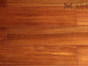 圆盘豆钛金面-HBN-7T-柚柜