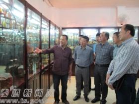 我县举办首届泰顺石展览