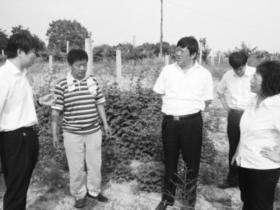 乡宁农商银行:构建信贷支农新模式