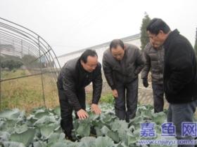 县农业局开办14期科技示范户培训班