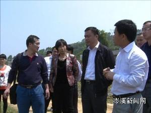 市长覃颂到安平镇调研产业型新农村建设情况