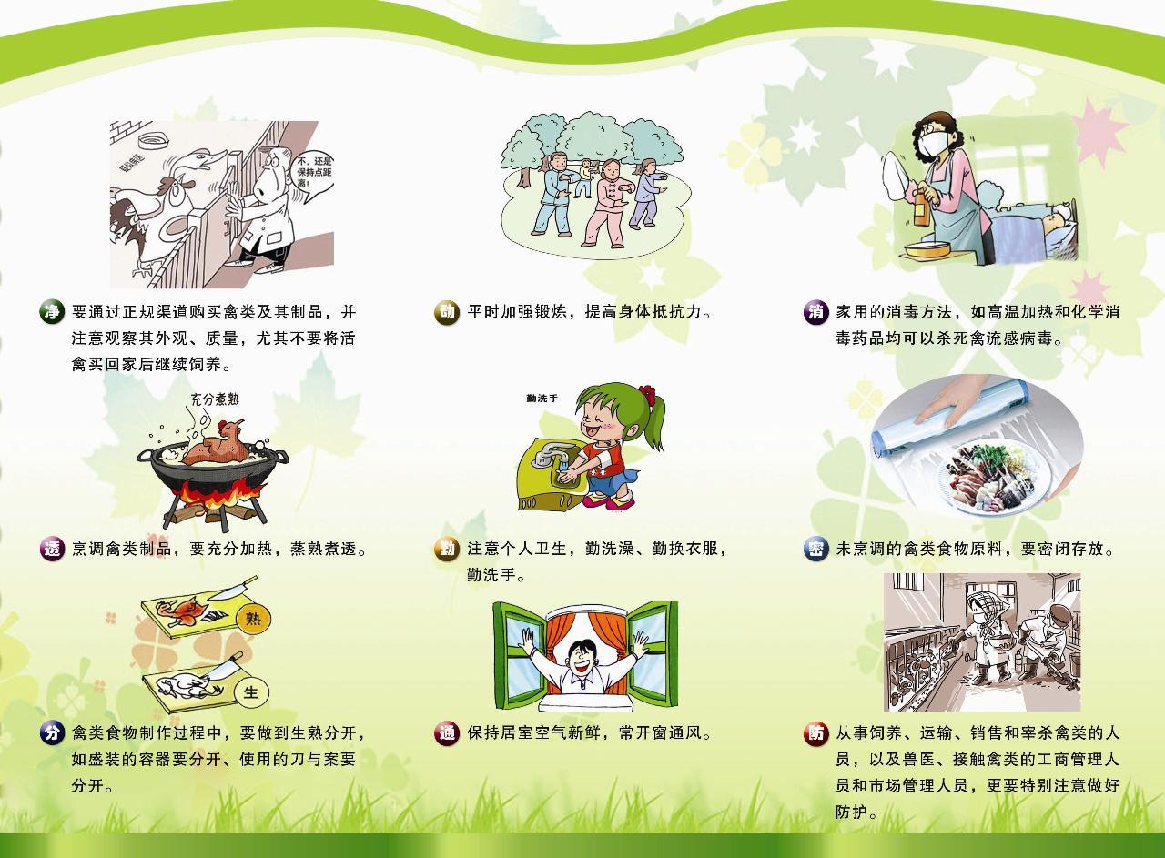 人感染H7N9禽流感科普文章 宣传图片图片