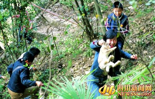 北川 焕然一新的 羌族第一县