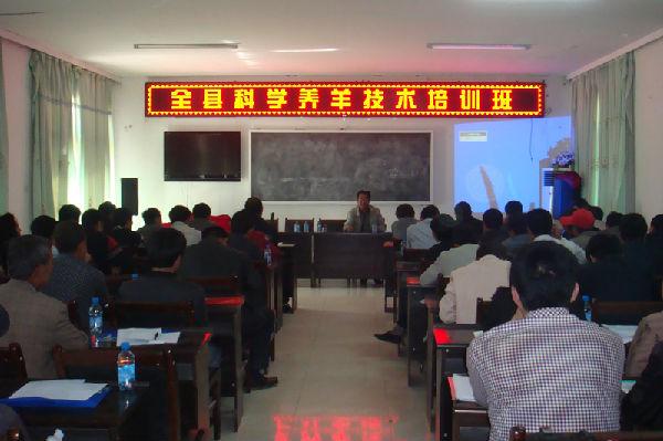 扶贫办,在马湾村开展了全县科学养羊技术