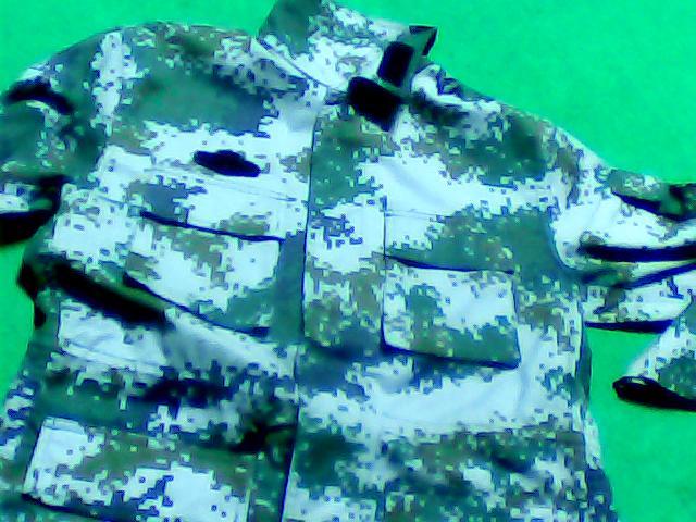 07陆军常服和迷彩服 07式陆军军官迷彩服 07女陆军女常服图片