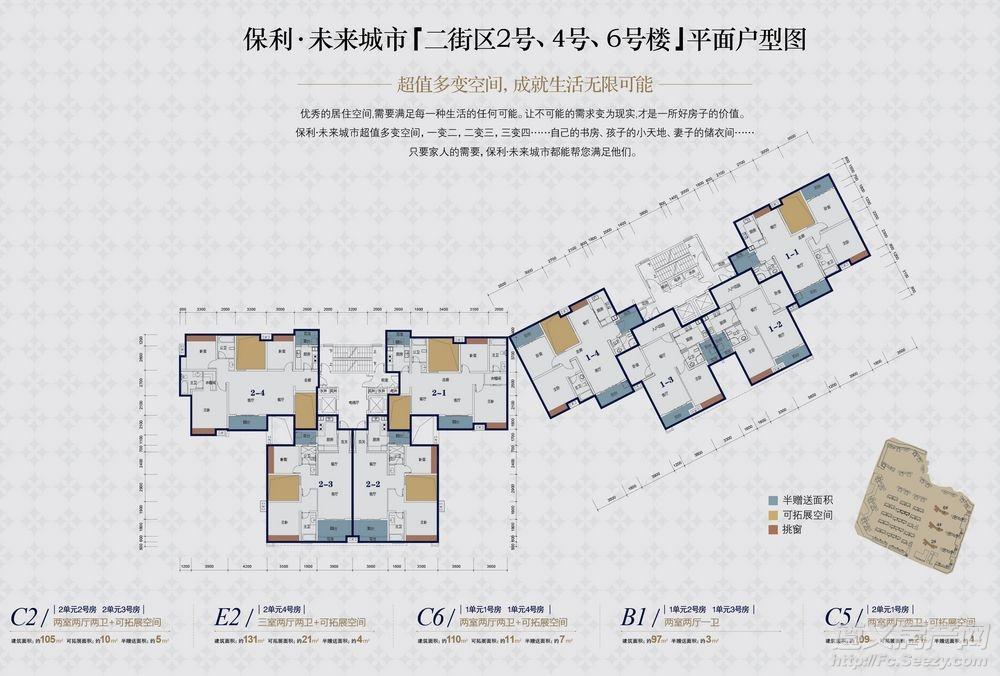 保利未来城市2区 2#、4#、6#楼层户型图