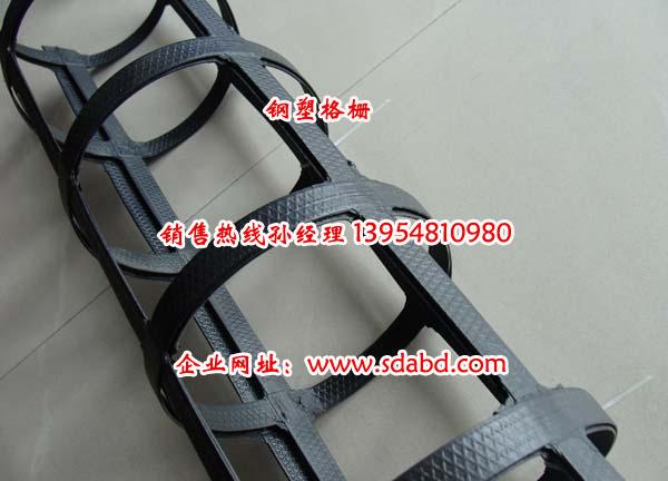 山东大庚玻纤有限公司-GSZ钢塑复合土工格栅