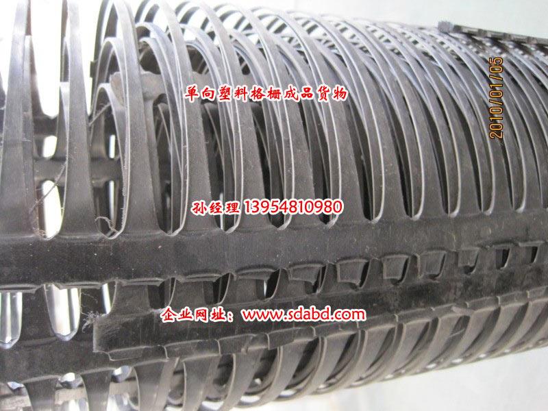 山东大庚玻纤有限公司-TGDG单向塑料土工格栅
