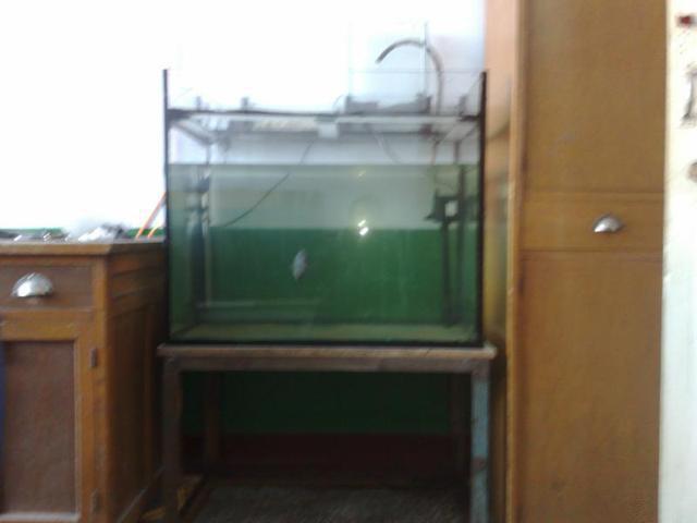 上滤鱼缸过滤设计图展示