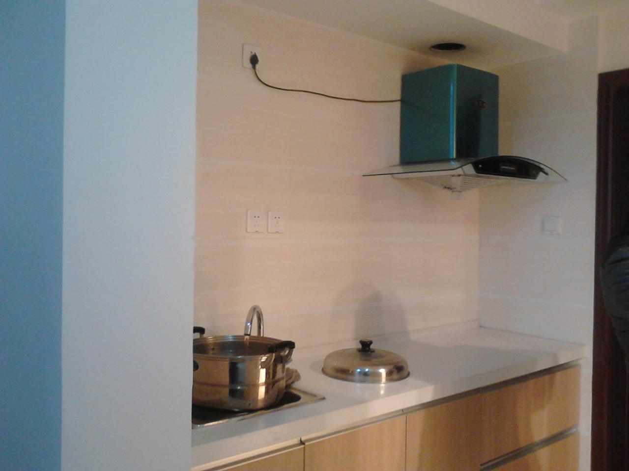 出租中强御金湾精装修公寓一室一厅一套