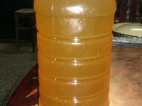 出售自家养殖蜜蜂产的蜂蜜正宗冬糖保健美容圣品