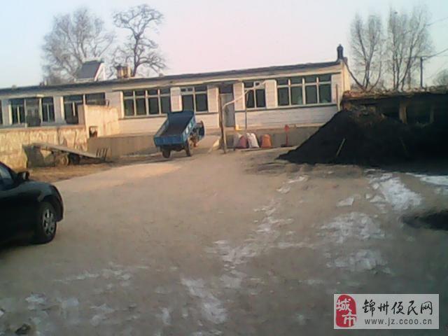 房屋出售 1000平米 平房 北镇常兴镇壮镇村