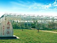 天津大港九州泓生态园