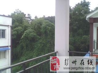 地震安置房彭州市新兴镇六阳苑(通济大桥下面)