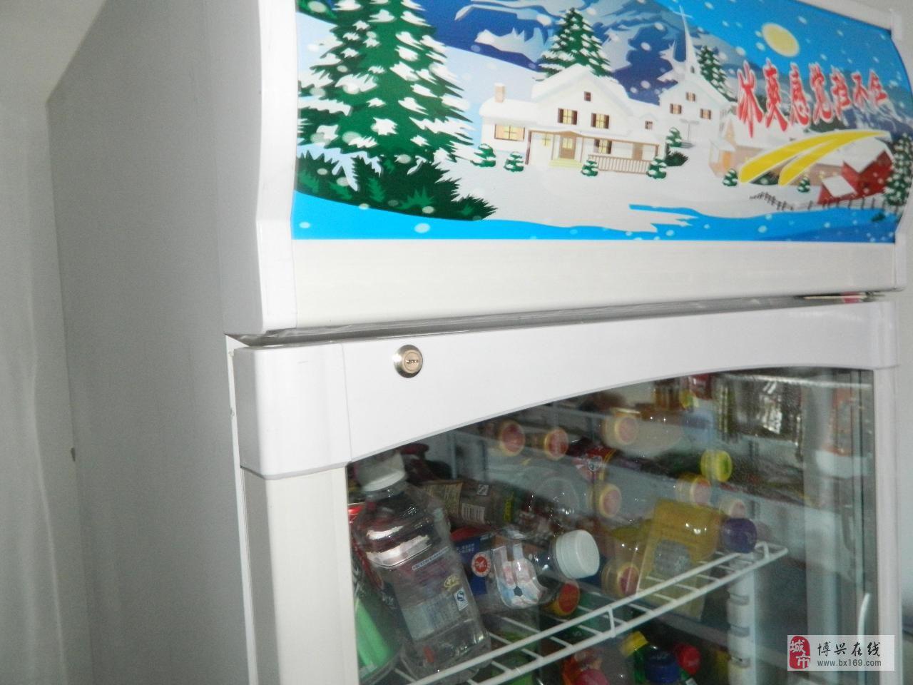 出售九五成新立式啤酒(冷饮)冰箱展示柜一台