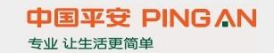 中国平安民乐支公司