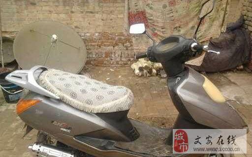 出售九成新精通天马50踏板摩托车