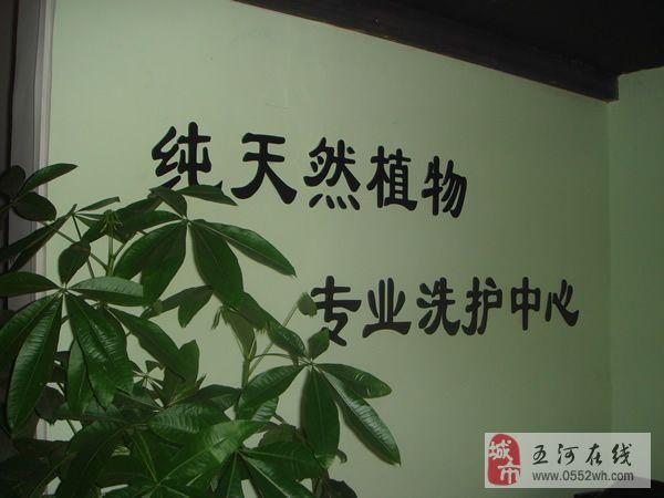 美丽人生从头开始中药茶麸洗护中心招商加盟中
