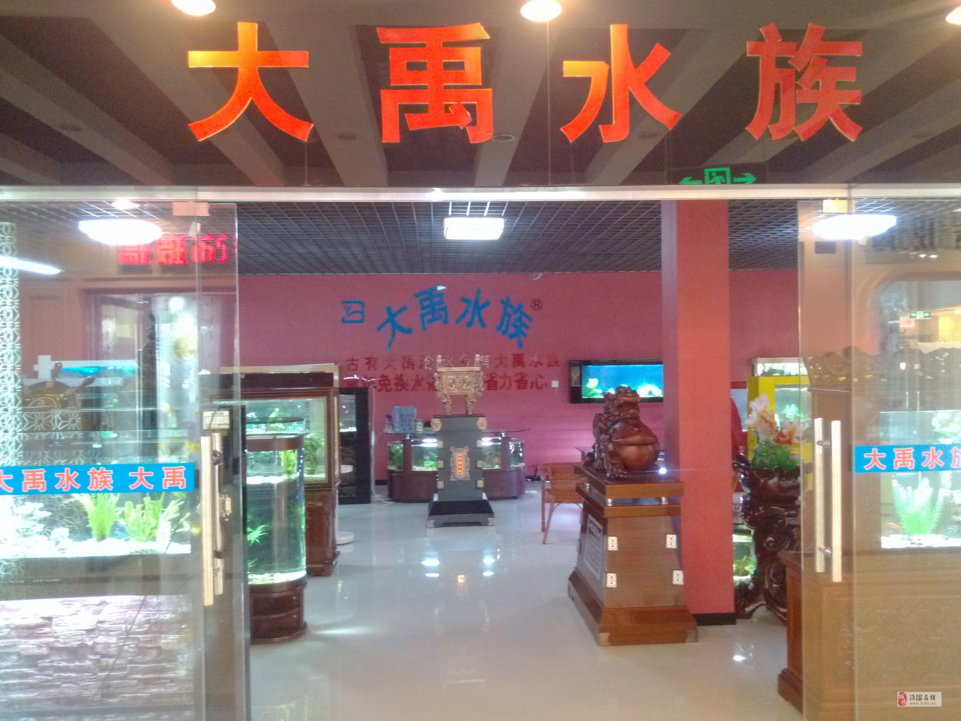 大禹水族生态鱼缸