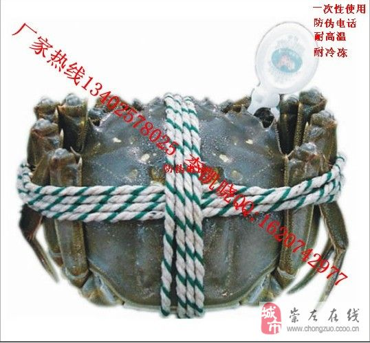 大闸蟹防伪戒指螃蟹蟹扣厂家个性化定做