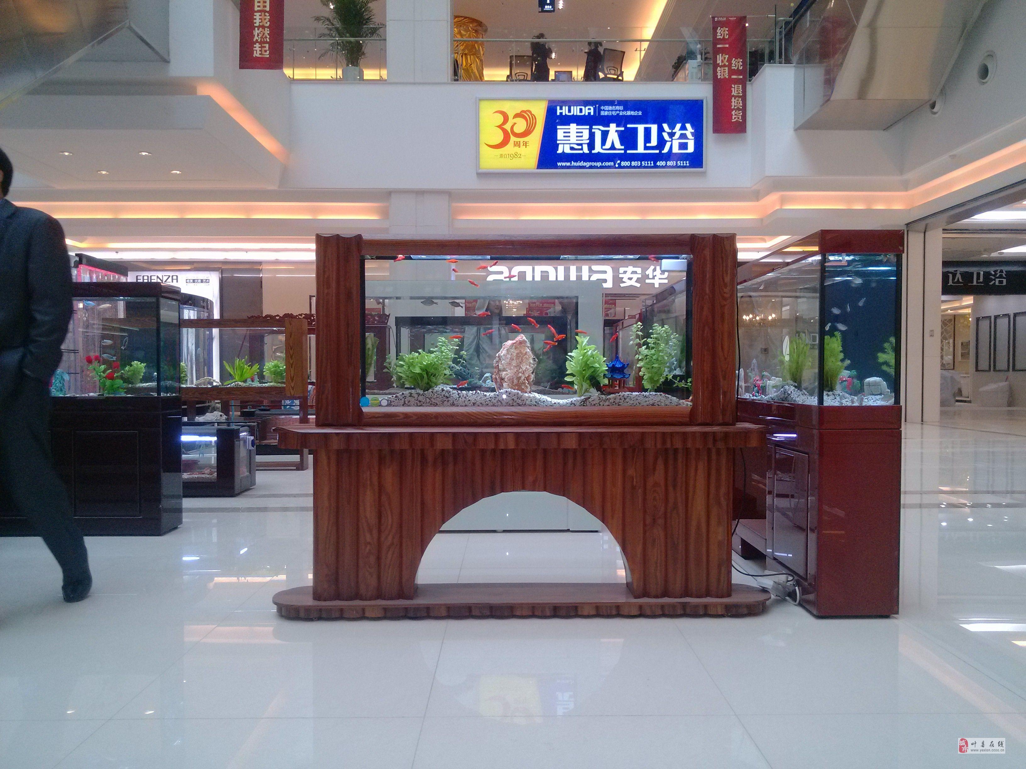 河南大禹水族生態魚缸