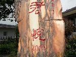 君悦2010