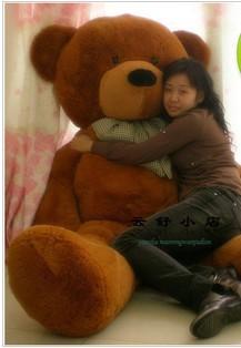 2.3米的泰迪熊