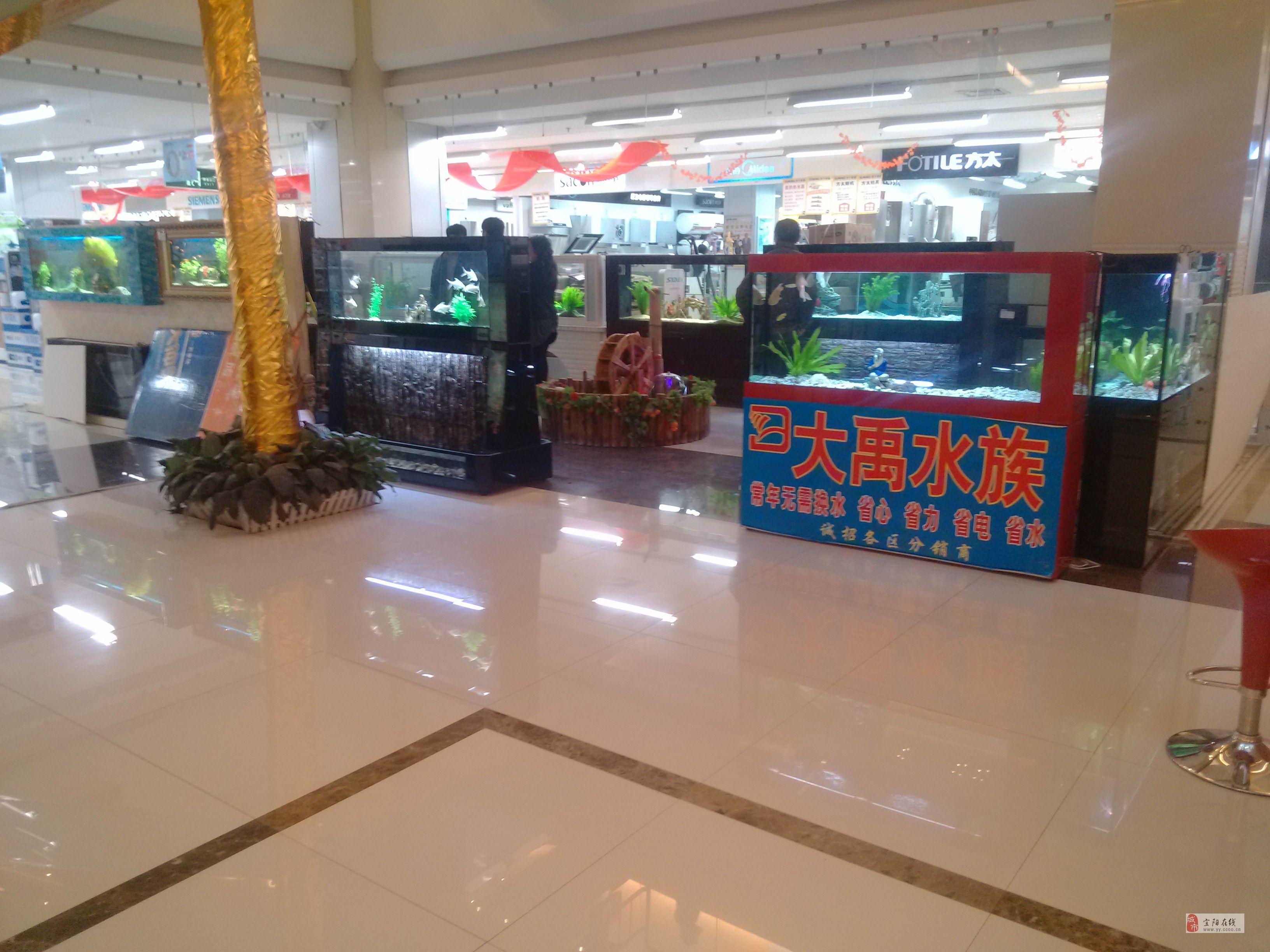 河南大禹水族生态鱼缸