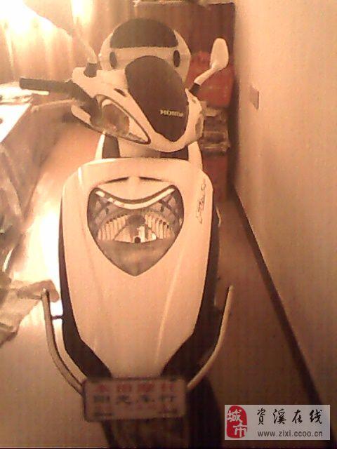 本田摩托白色