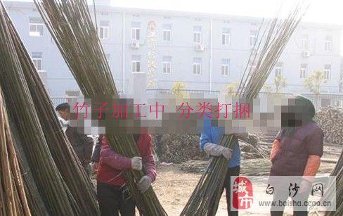 用竹子做蚊帐架图解