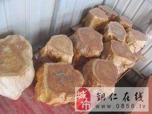 �~仁德江出售天然根雕茶�� - 5200元