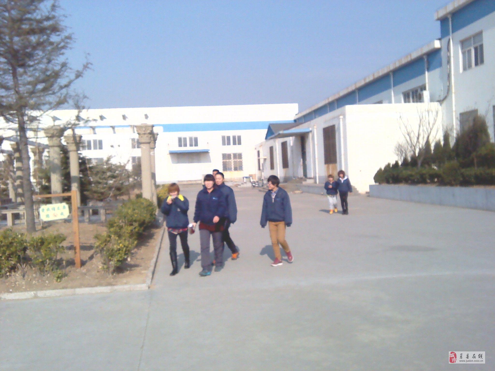 工人/技工 >> 招聘信息  公司名称:青岛汉阳电子有限公司   公司地址