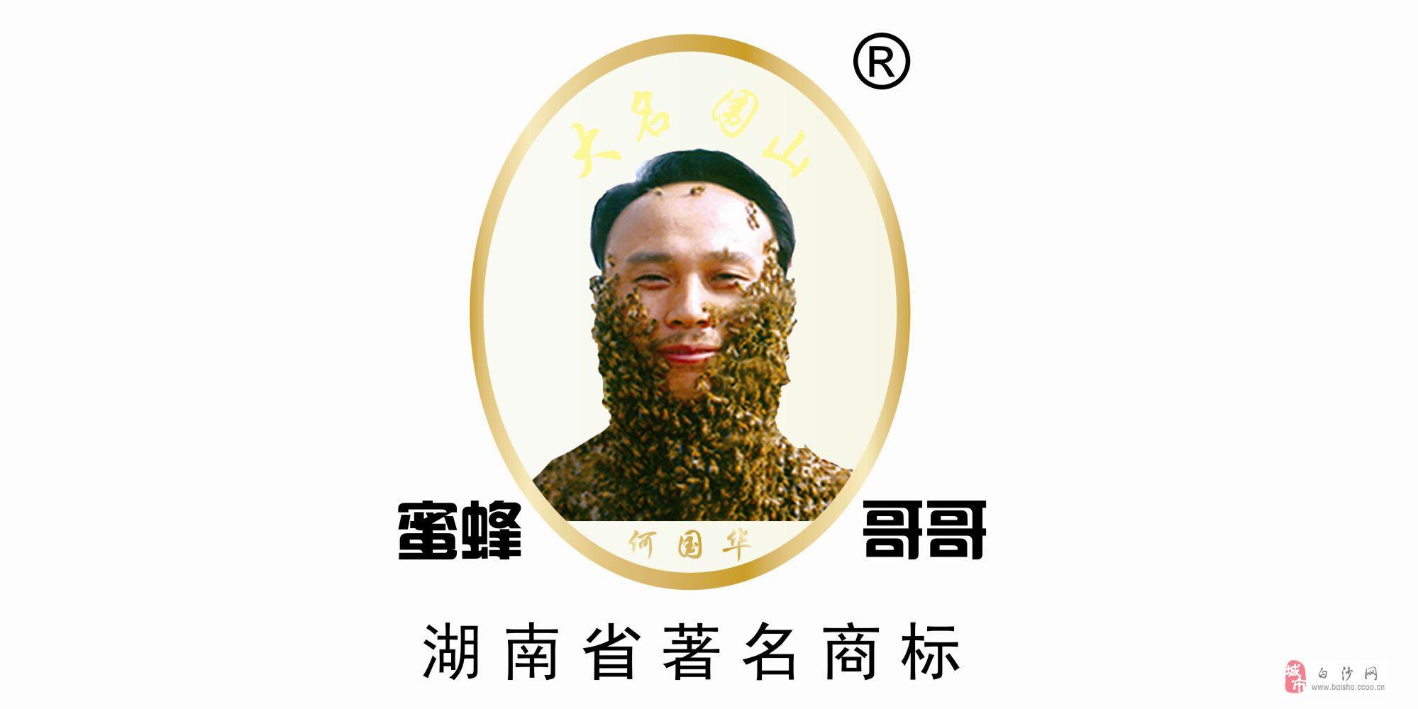 長沙養蜂技術咨詢