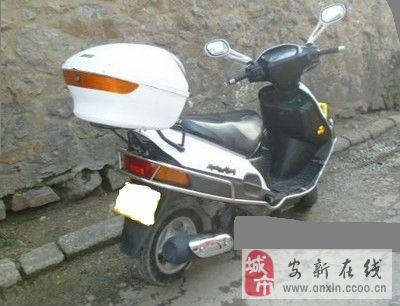 正品豪爵海王星摩托车