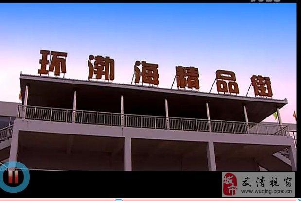 武清環渤海綠色農產品交易物流中心精品街一樓招商